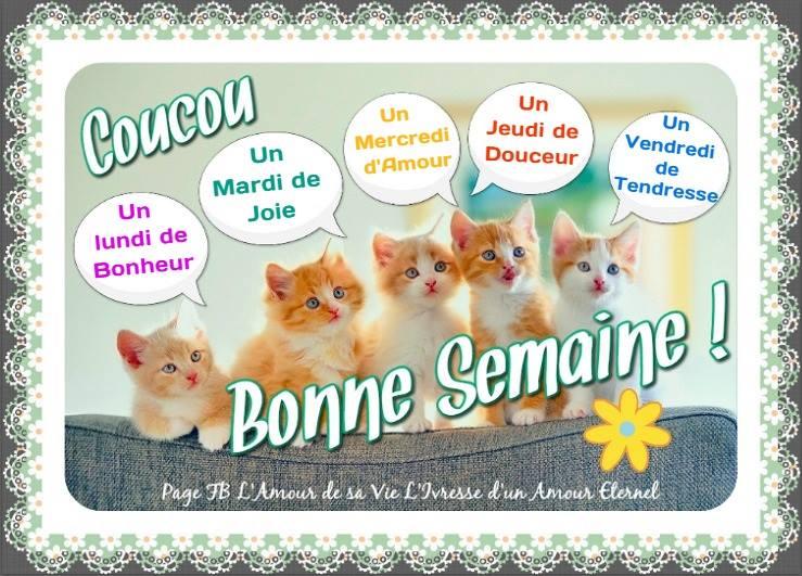 Humour - Bonne semaine ;-) | Forum poésie et écriture Poèmes et Poètes - JePoemes.com