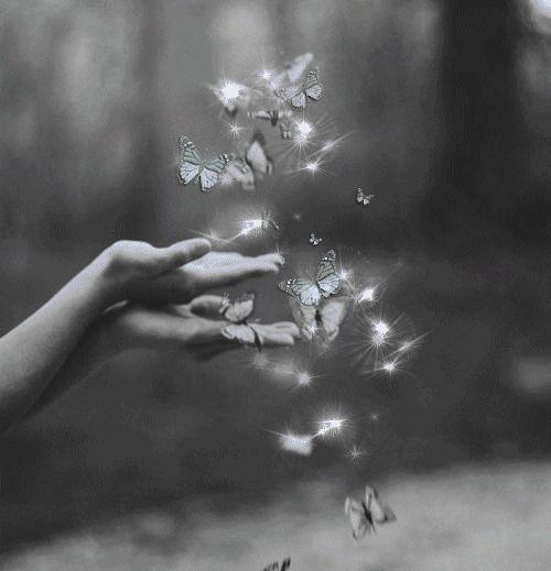 25af4ec7c84a089a405afb180e1736d8--butterfly-kisses-butterflies.jpg