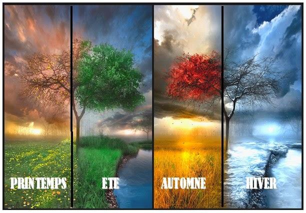 4 Saisons de l'année.jpg