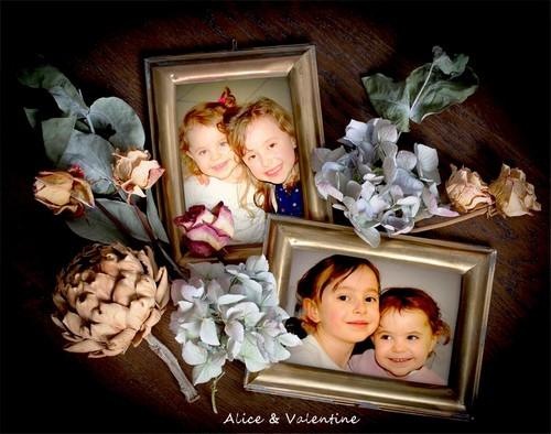 Alice & Valentine -1D.jpg