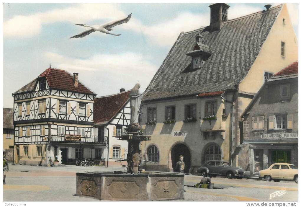 Alsace cigogne.jpg