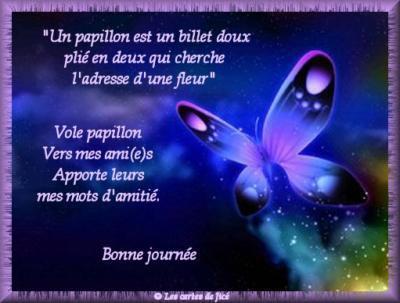 Amitié papillon.jpg