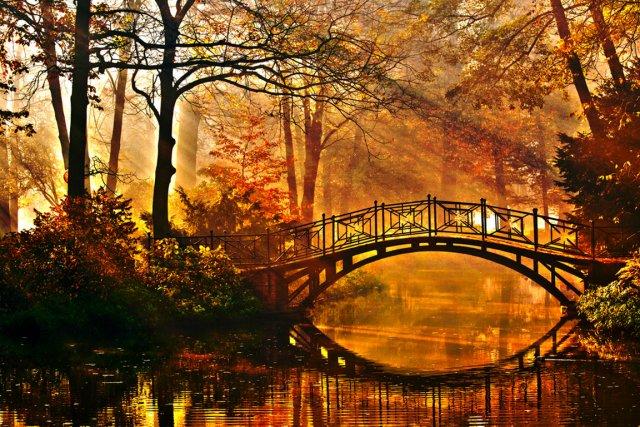 automne 22.jpg