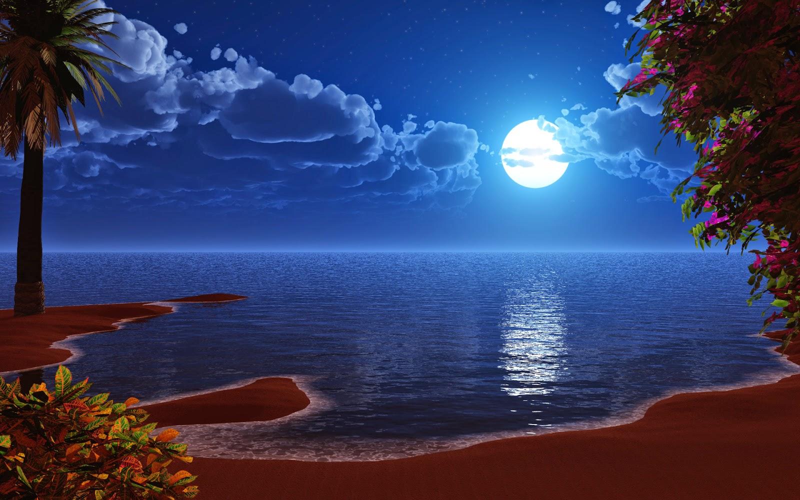 beauty-of-nature-at-night-in-full-moonlight[1].jpg