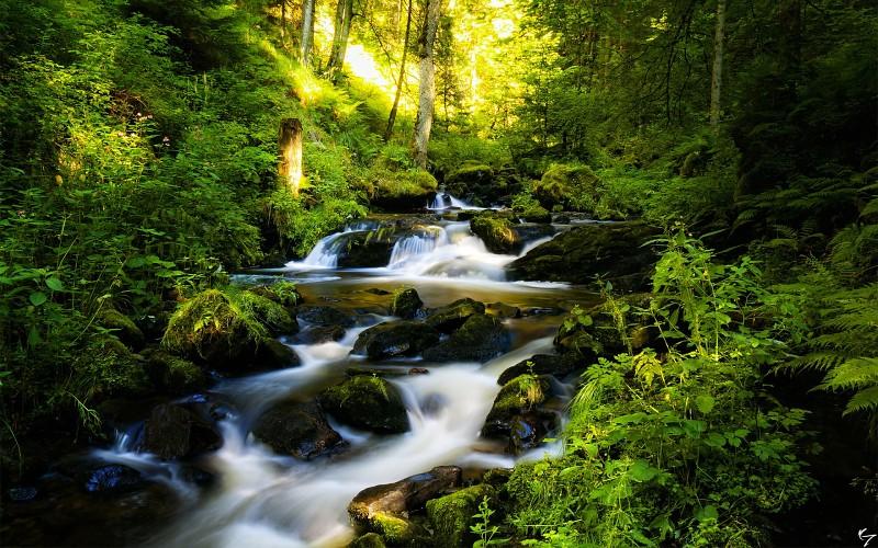 Belle rivière.jpg