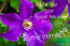 Bonne journée       Une fleur.jpe