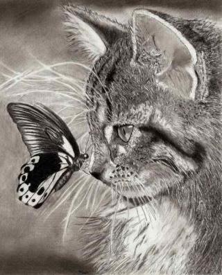 cat_by12.jpg