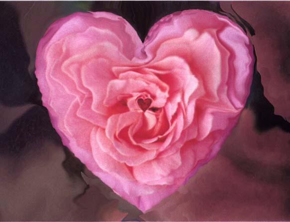 coeur de rose 2.jpg