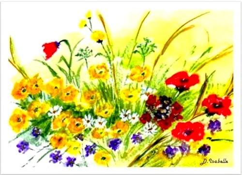 fleurs des champs - D.Isabelle-1.jpg