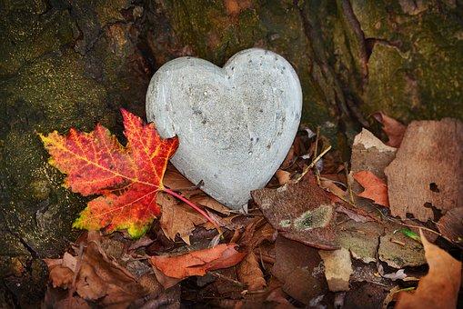 heart-3764307__340.jpg