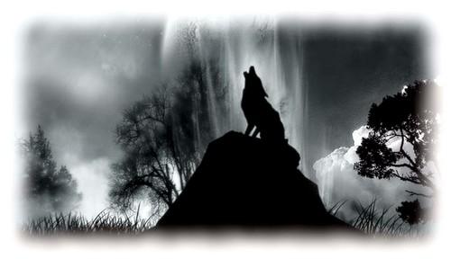 Le loup des montagnes-02.jpg