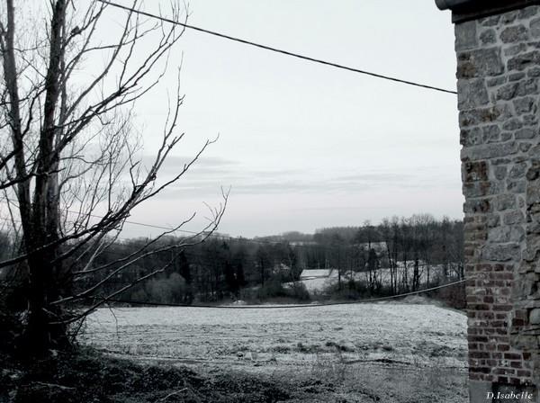 l'hiver au printemps.jpg 1.jpg