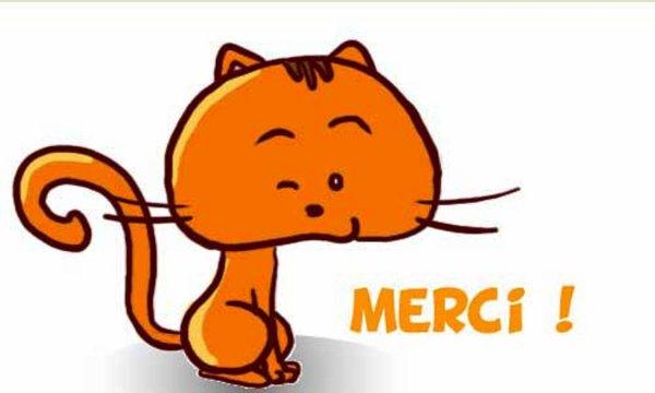 merci chat clin d oeil.jpg