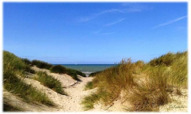 ob_77abb8_bray-dunes1.jpg
