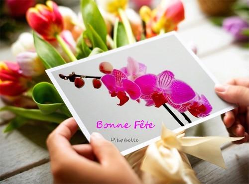 Poème Fleur Sensuelle Et Charnelle Jepoèmes Forum
