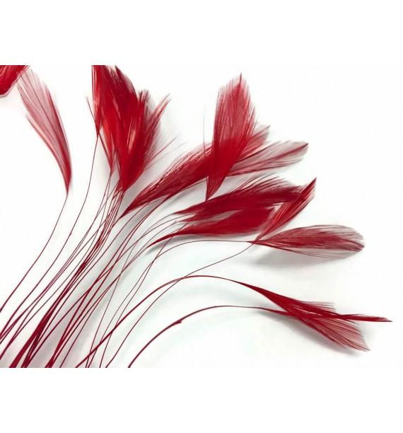 petit-bouquet-de-fleurs-plumes-rouge[1].jpg
