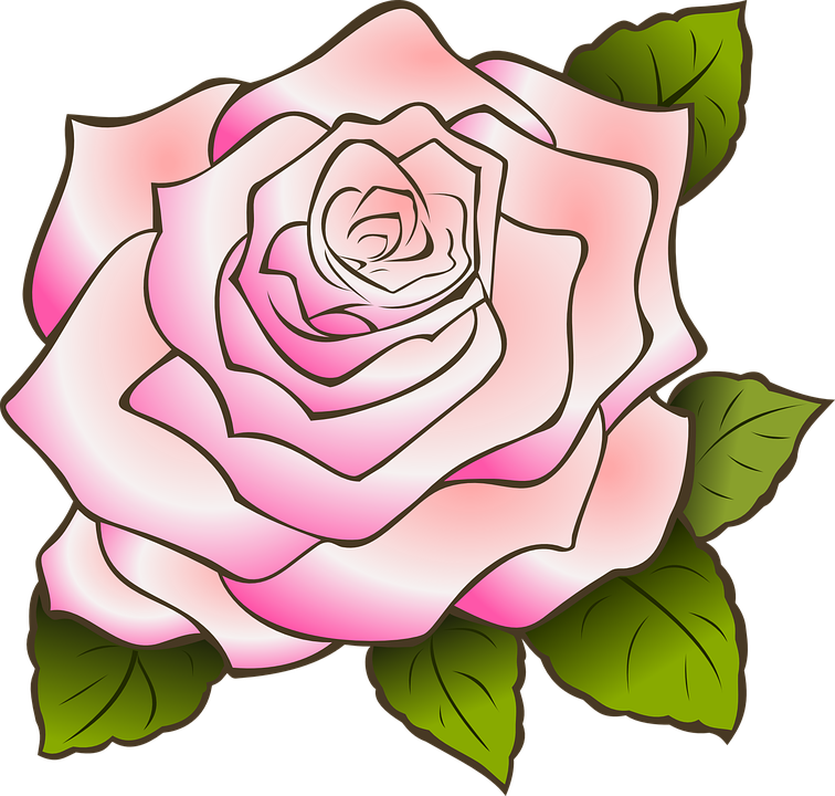 rose-309524_960_720.png
