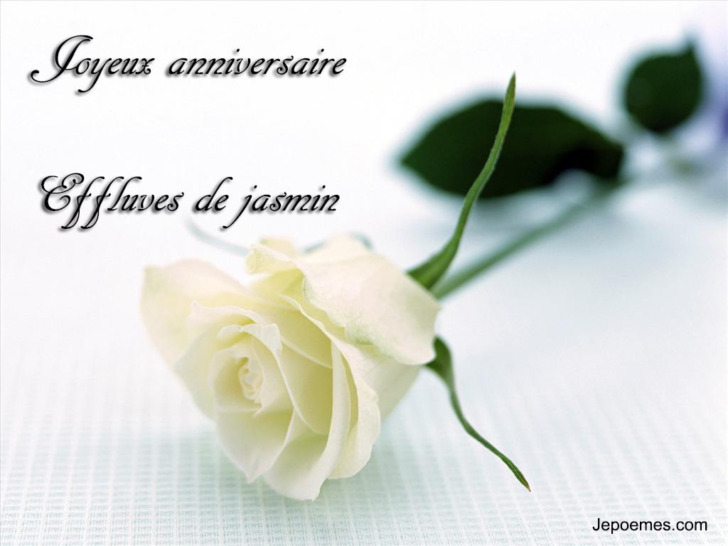 rose-blanche-anniversaire.jpg