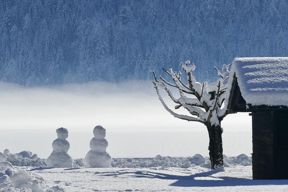 winter-3068244_960_720.jpg