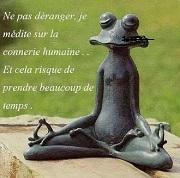 zen (2).jpg